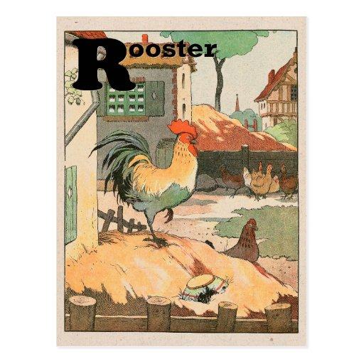 Alfabeto do galo cartões postais