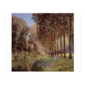 Alfred Sisley - canvas do óleo de Rast am Flußufer Cartao Postal