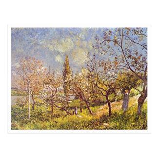 Alfred Sisley - pomar no primavera. Canvas do óleo Cartão Postal