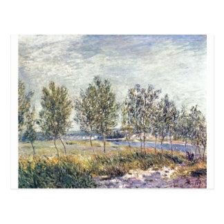 Alfred Sisley - Wiese em 1880 no óleo em canvas Cartão Postal