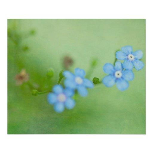 Algo pouco, algo azul fotografia