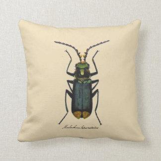 Algodão do Reversible da entomologia dos insetos Almofada