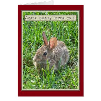 Cartão Algum coelho ama-o cartão de nota
