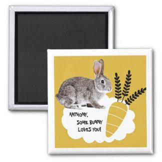 Algum coelho ama-o. Ímãs do presente da páscoa Imã