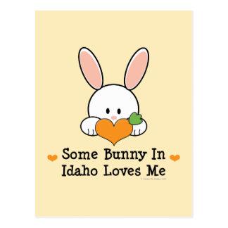 Algum coelho em Idaho ama-me cartão