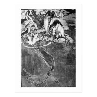 Alice B. Woodward: Cartão da arte de Hesperornis