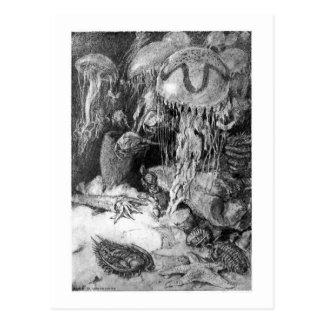 Alice B. Woodward: Cartão marinho cambriano da