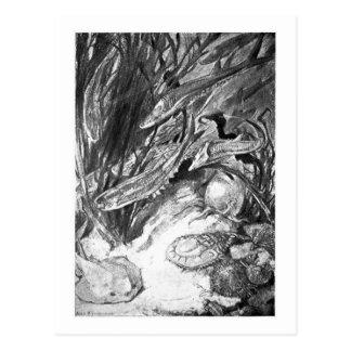Alice B. Woodward: Cartão marinho Silurian da arte