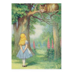 Alice e o gato de Cheshire Cartao Postal