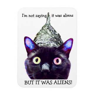 Aliens! Ímã do gato