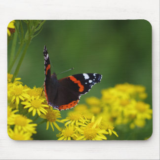Almirante vermelho borboleta Mousepad