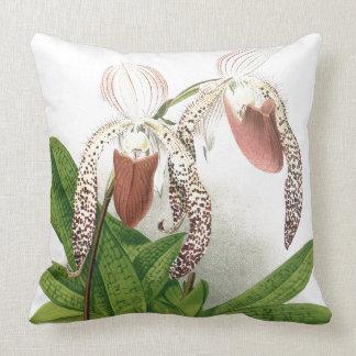 Almofada A orquídea botânica do Cypripedium floresce o