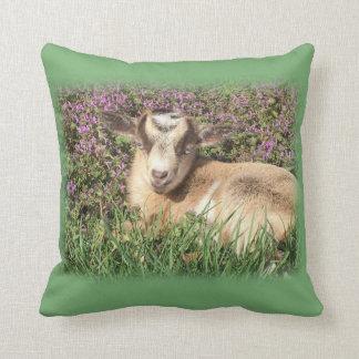 Almofada Animal de fazenda do Barnyard do miúdo da cabra do