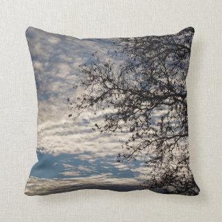 Almofada Árvore do sicômoro no céu nebuloso perto do