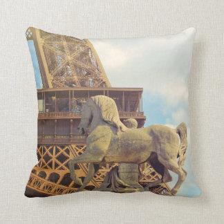 Almofada BELEZA FRANCESA 16 x travesseiro 16