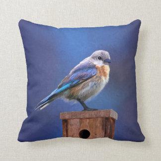 Almofada Bluebird (fêmea)