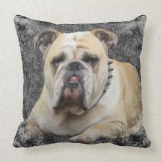 Almofada Cães, bulldogge inglês, vista desagradável,