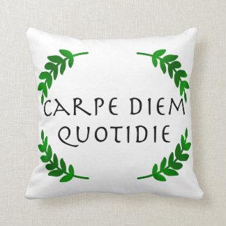 Almofada Carpe Diem Quotidie - apreenda o dia, cada dia