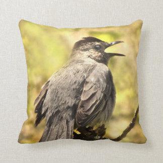 Almofada Catbird cinzento que canta seu travesseiro