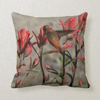 Almofada colibri flw. cardinal