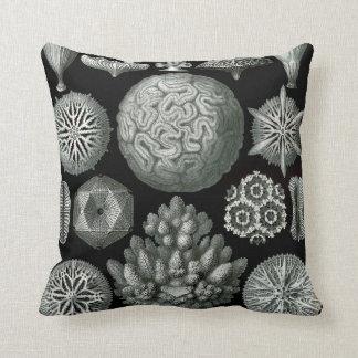 Almofada Coral de Ernst Haeckel Hexacorallia