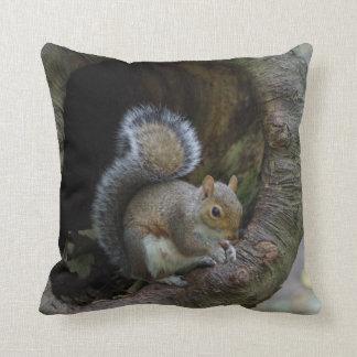 Almofada Coxim do esquilo