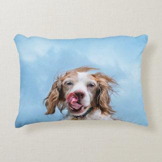 Almofada Decorativa Brittany com o travesseiro do acento da atitude