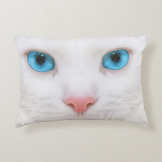 Almofada Decorativa Preto contra o travesseiro branco do gato