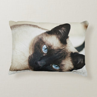 Almofada Decorativa Travesseiro do gato Siamese