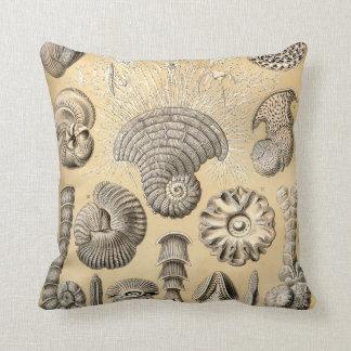 Almofada Escudos de Ernst Haeckel Thalamophora