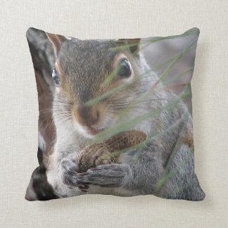 Almofada Esquilo insolente de Z com o travesseiro do