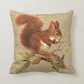 Almofada Esquilo vermelho bonito na serapilheira da juta do