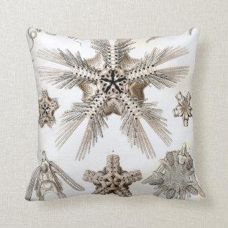 Almofada Estrelas frágeis de Ernst Haeckel Ophiodea
