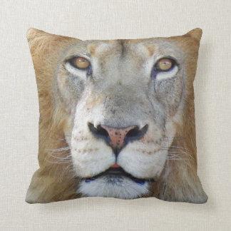 Almofada Fim majestoso do leão acima