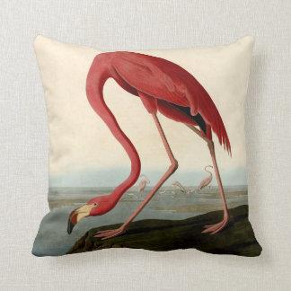 Almofada Flamingo do americano de Audubon