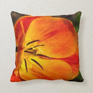 Almofada Flor amarela vermelha da tulipa