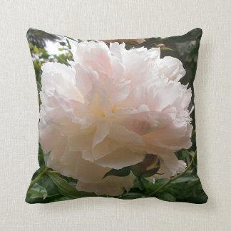 Almofada Flor cor-de-rosa da peônia