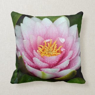 Almofada Flor cor-de-rosa do lírio de água