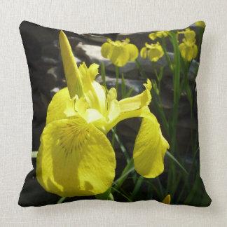 Almofada Floral brilhante das íris amarelas