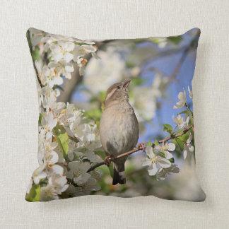 Almofada Flores do pardal e do primavera de casa