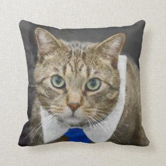 Almofada Gato de gato malhado marrom verde-eyed bonito que