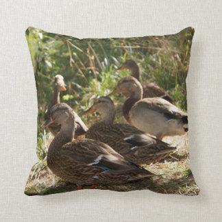 """Almofada Grupo de patos, travesseiro decorativo 16"""" x 16"""""""