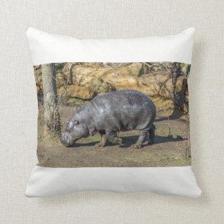 Almofada Hipopótamo do pigmeu no coxim do lance do jardim