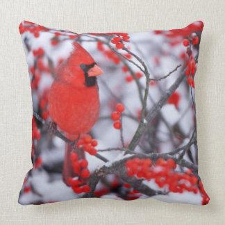 Almofada Homem cardinal do norte, inverno, IL