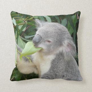 Almofada Koala que come a folha da goma