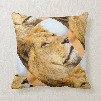 Almofada Leão grande que olha longe