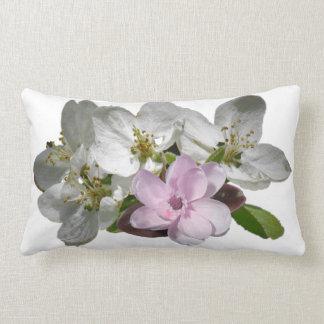 Almofada Lombar Acento branco cor-de-rosa das flores de Apple