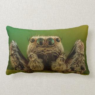 Almofada Lombar Aranha de salto Eyed verde Arachnology