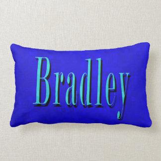 Almofada Lombar Bradley, logotipo conhecido no mosaico azul