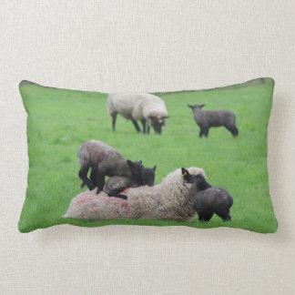 Almofada Lombar Cordeiro e carneiros do primavera